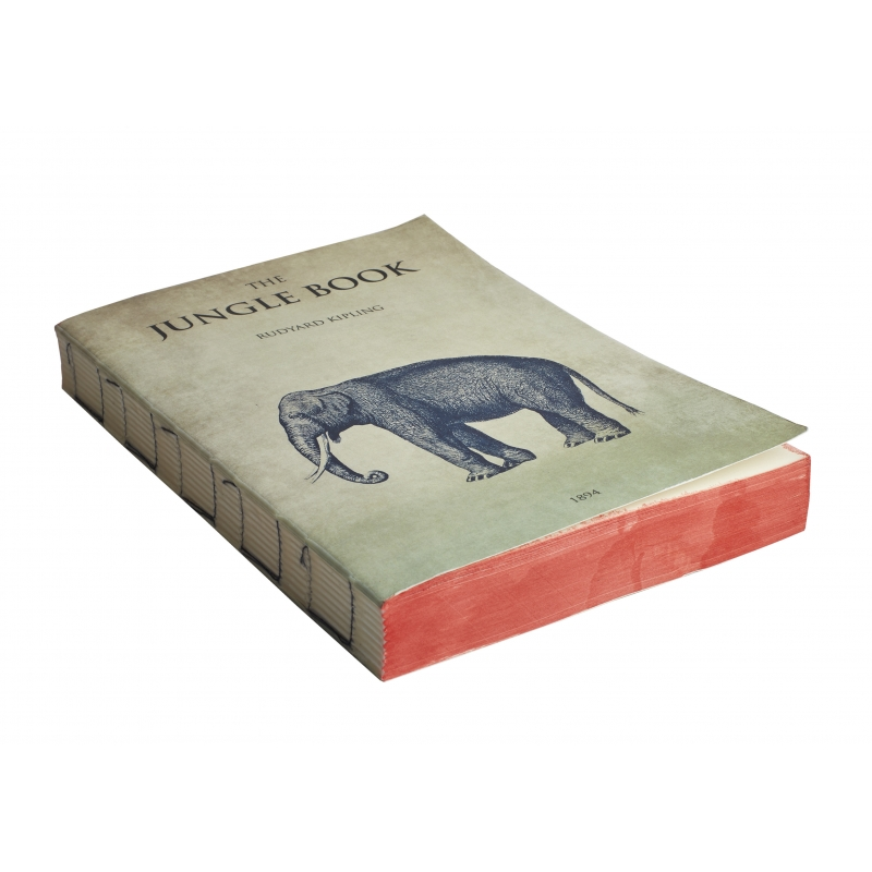 Ailleurs Paris Carnet 15x21 jungle book